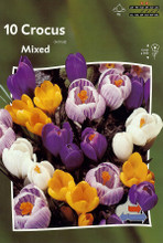 Crocus Mixed colors 10_bulbs