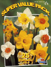 Daffodils mixed 25_bulbs