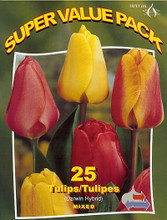 Tulips Darwin Hybrid mixed 25_bulbs