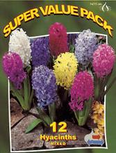 Hyacinths mixed 12_bulbs