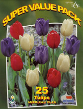 American Flag Tulips 25_bulbs