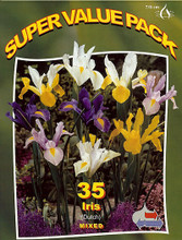 Dutch Iris mixed 35_bulbs
