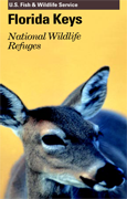 key-west-national-wildlife-refuges-cover.png