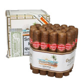 Quintero - Favoritos - Bundle of 25 Cigars