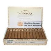 San Cristobal - El Principe - Box of 25 Cigars