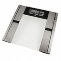 American Weigh Scales Quantum Digital Body Fat Scale - QUANTUM