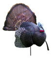 Primos B-Mobile Turkey Decoy - PRI-69041