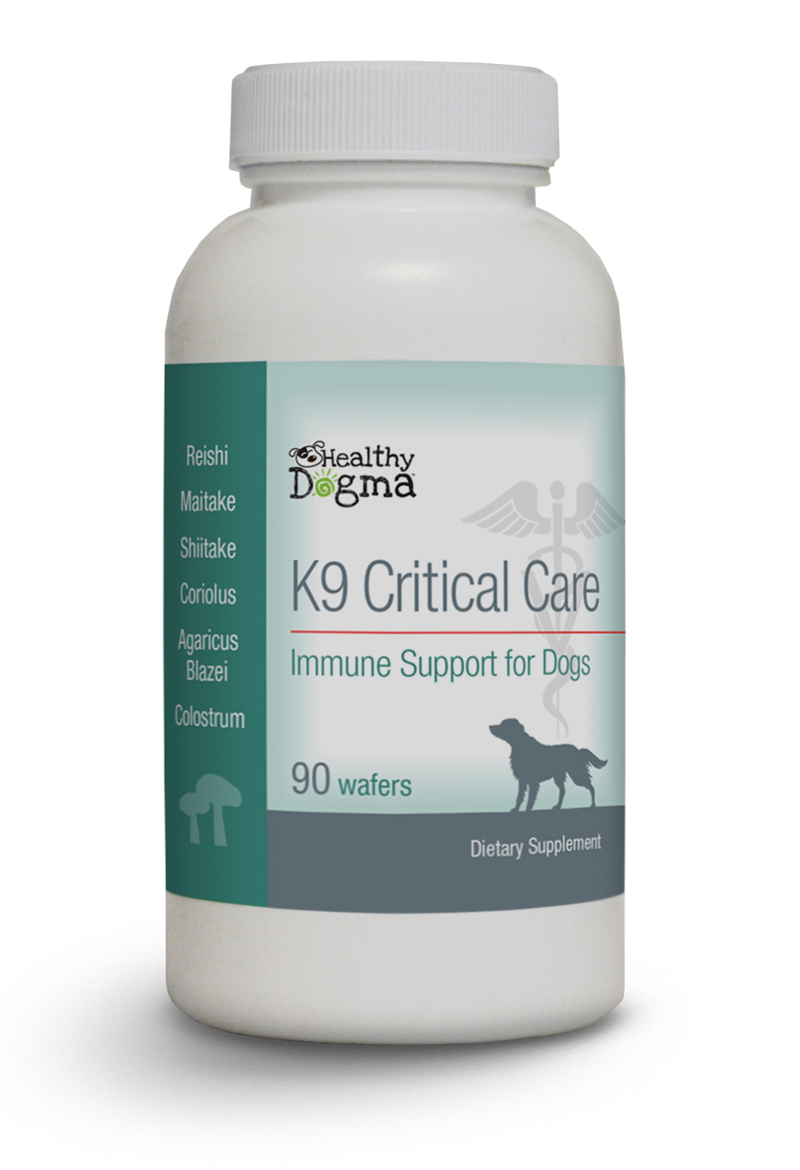 Healthy Dogma K9 Critical Care Mushroom Supplements