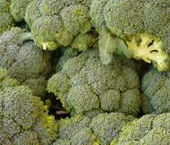Broccoli Waltham 29 Organic Brassica Oleracea Seeds