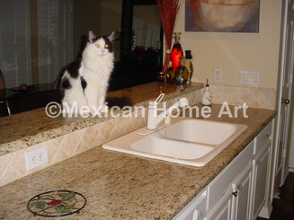 Custom Copper Kitchen Sink for MD