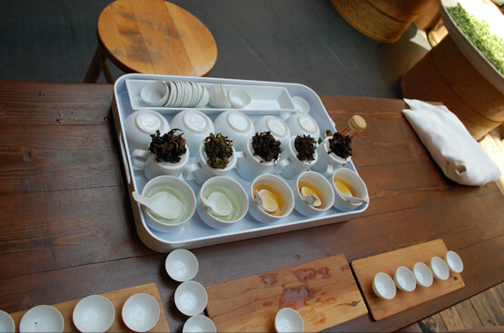 Tea Tasting at Tea Hawaii & Company