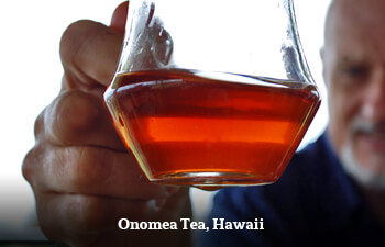 Organic Tea from Hawaii