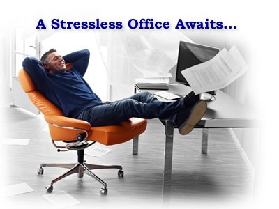 Stressless Dream Office Chair