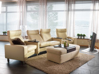 Space Theater Seating in Paloma Leather.