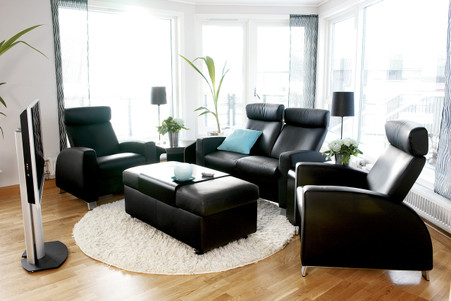 Black Paloma with Steel Legs is very popular on the Arion Home Theater Seat.