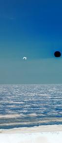 Black Moon White Bird 36X25