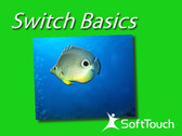Switch Basics