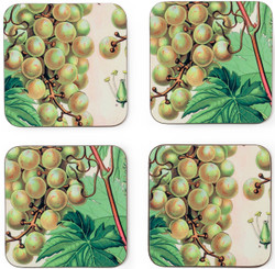 Set of 4 Coasters - Botanical Grapes
