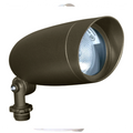 Landscape Flood Light  PAR 20 #76-646