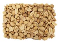 Roasted Jumbo Unsalted Peanuts