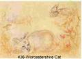 Worcestershire Cat