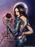 rosa-noctis-ca857br-.jpg