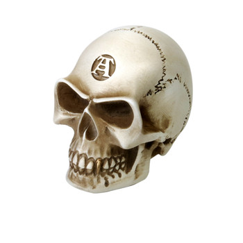 V40 - Bone Colored Skull Paperweight