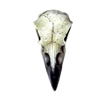 V66 - Reliquary Raven Skull