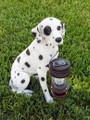 Dalmation Dog With Lantern Solar Light (5197)