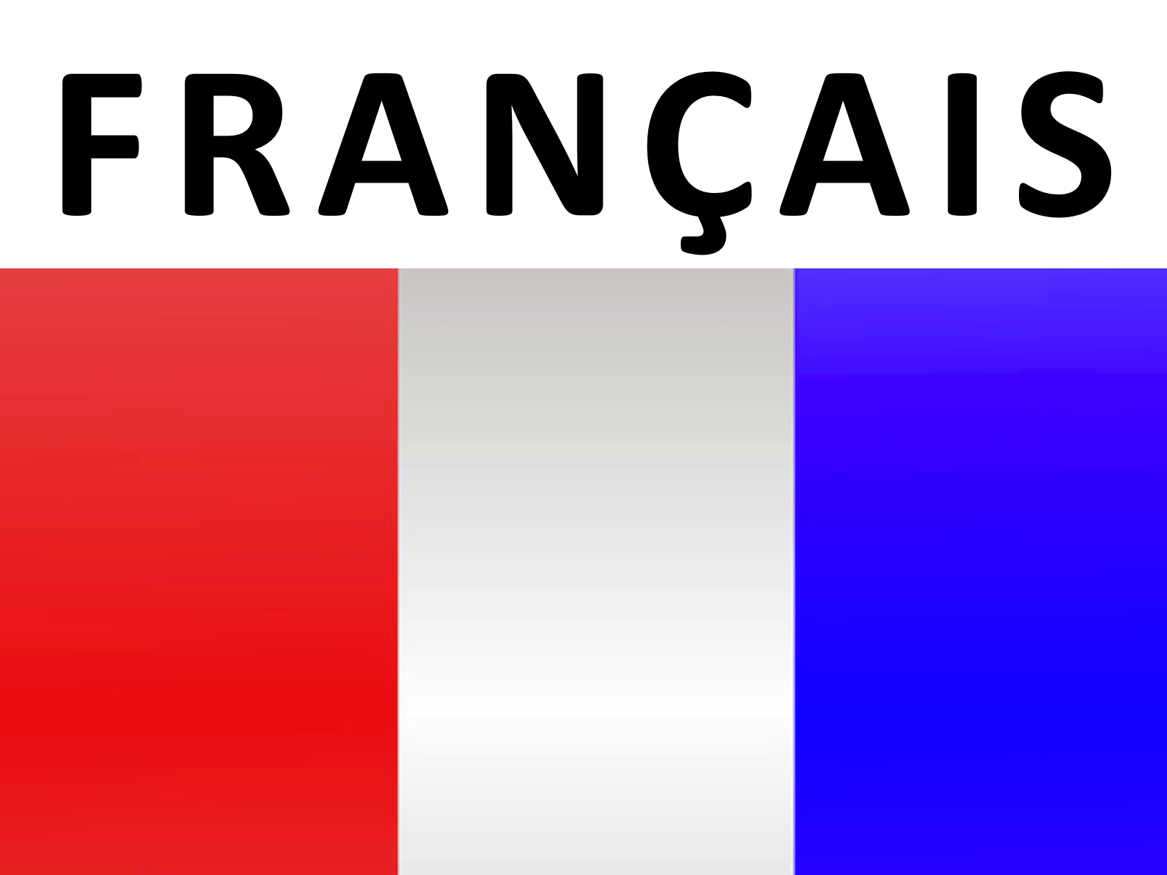 flags-french.jpg