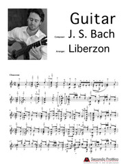 Violin Partita No. 2 in D minor - 5 Chaconne by Bach/Liberzon