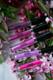 Aromi pink and purple liquid lipstick