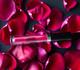 Aromi Neon Red Matte Liquid Lipstick vegan lipstick gluten-free