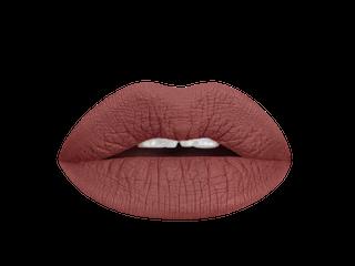 Aromi magnetic mahogany matte lipstick