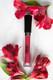brick red lipstick