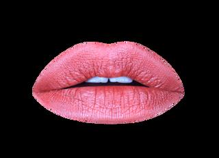 pumpkin spice metallic matte liquid lipstick