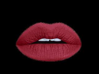 Burgundy Beet Matte Liquid Lipstick