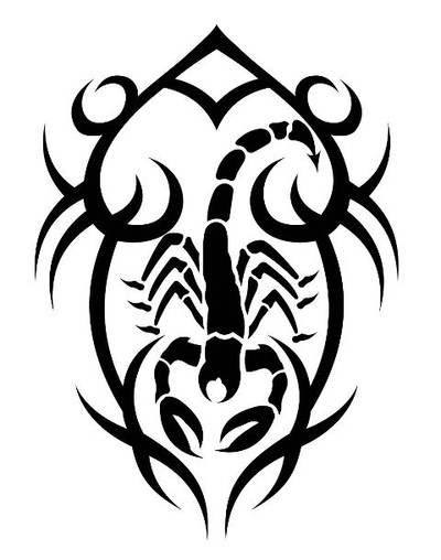 animal decals, reptile decals, scorpion decals, car decals, car stickers, decals for cars, stickers for cars, window stickers, vinyl stickers, vinyl decals