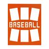 "Unframed Baseball Player Photo Mat Gift 16"" x 20"" for 4"" x 6"" Photos in orange"