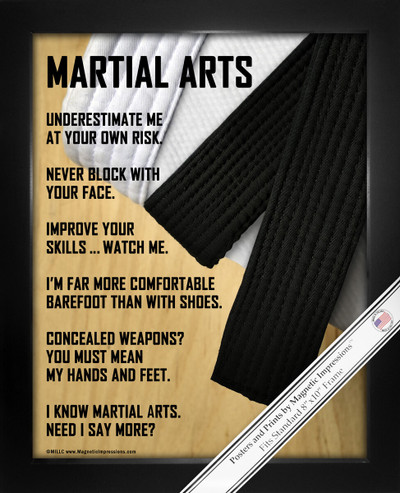 Framed Martial Arts 8x10 Sports Poster Print