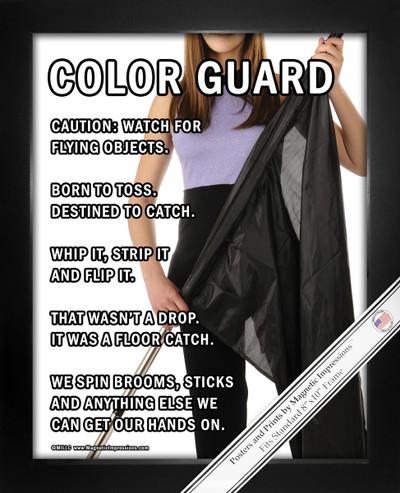 Framed Color Guard Flag 8x10 Sport Poster Print