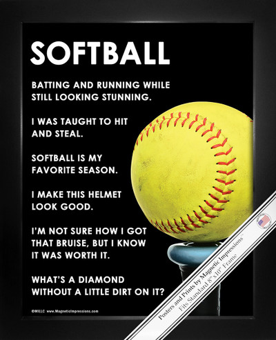 Framed Softball Bat 8x10 Sport Poster Print