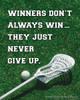 Unframed Lacrosse Inspirational Winners Quote Men's 8 x 10 Sport Poster Print