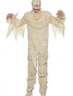 Adult Mummy Costume