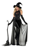 WOMEN'S RAVEN WITCH COSTUME