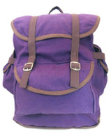 DORA EXPLORER Lost City of Gold BACKPACK