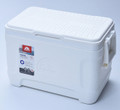 Igloo Marine 25 Cooler 23L Camping Ice Box (44677)