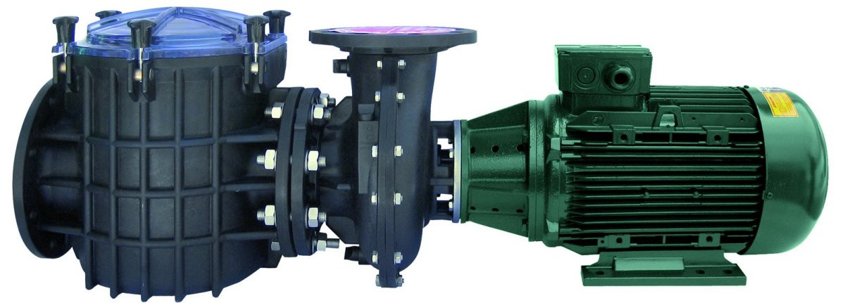 Certikin Giant Commercial Swimming Pool Pump