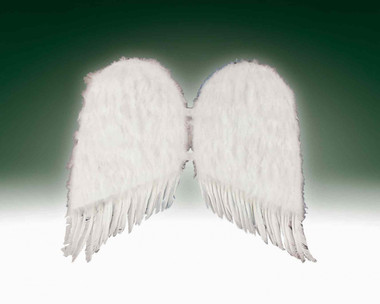 """FEATHER WINGS WHITE BIG SIZE 31 """" long one wing. 18"""" wide one wing."""