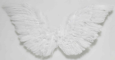 "FEATHER WINGS WHITE BIG SIZE 18 "" long one wing. 11"" wide one wing."